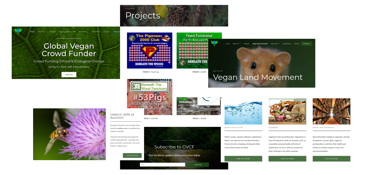 Screenshots taken from Global Vegan Crowd Funder website